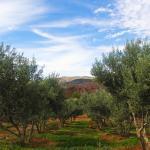 morocco-1407