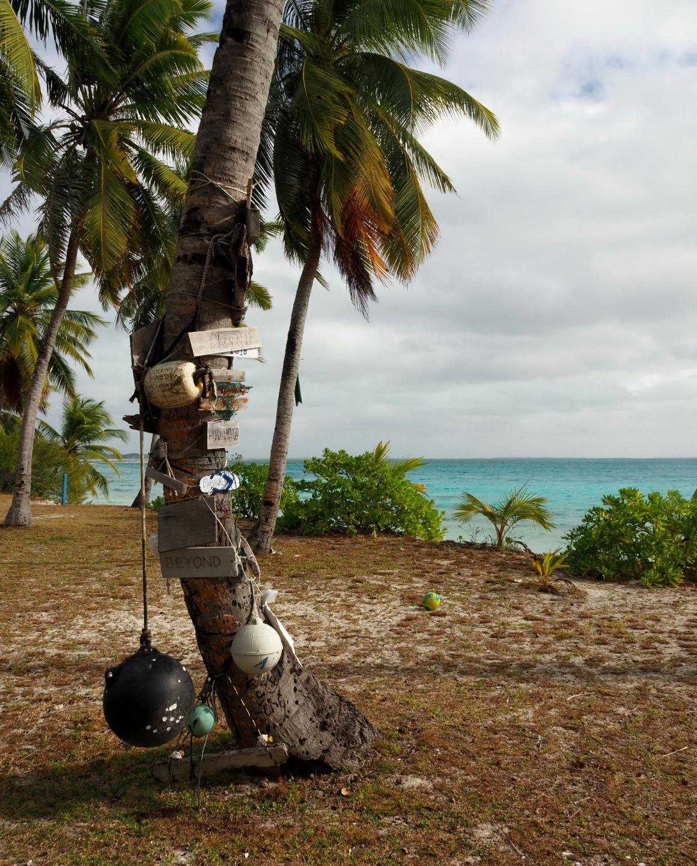 life on a deserted island